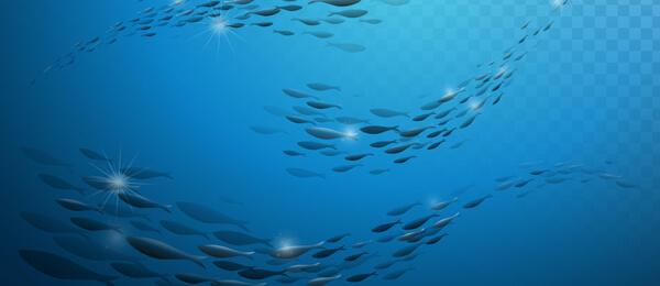 魚を原料とするコラーゲン